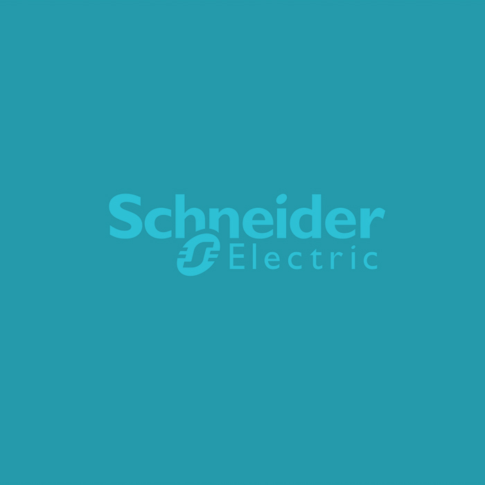 Scheider Electric Case Study